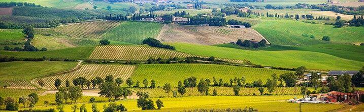 Location vacances Casole d'Elsa, votre location Italie avec Odalys