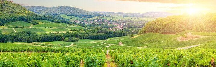 Location vacances en Bourgogne avec Odalys