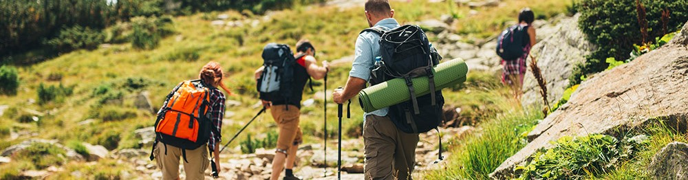 Mountain summer holidays : Free guided hikes !