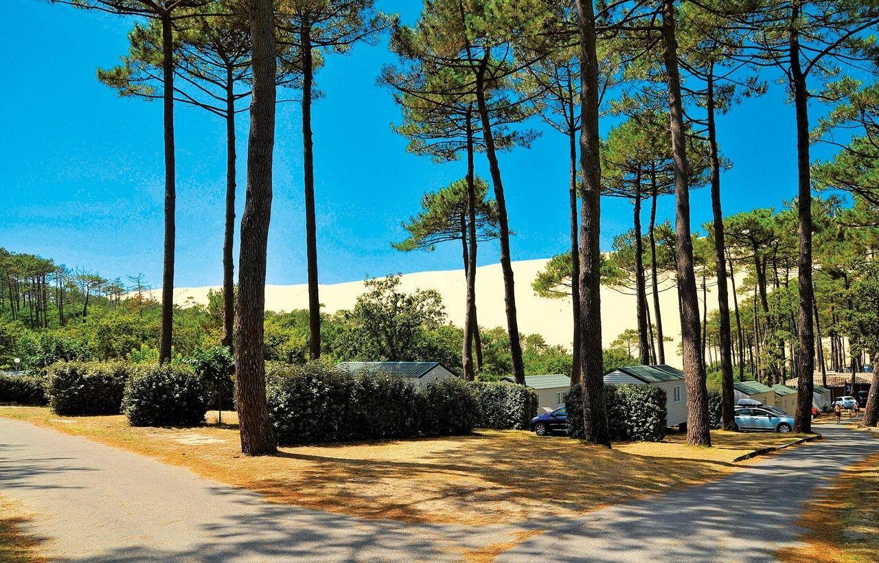 1c6e096d570eaa Location mobil home à Pyla sur Mer au Camping La Forêt   Odalys