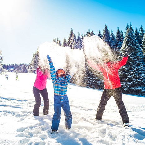 ski holiday rentals with spa