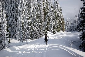 Ski de fond l'Alpe d'Huez
