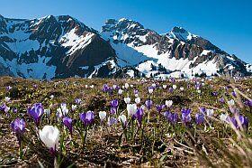 les beaux paysages de Savoie