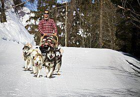 Conduite de chiens de traineaux aux Arcs