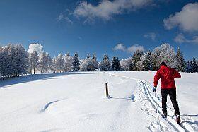 ski nordique paysages enchanteurs à la Plagne