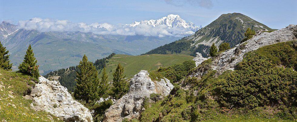 paysages champêtres de la Plagne en Savoie
