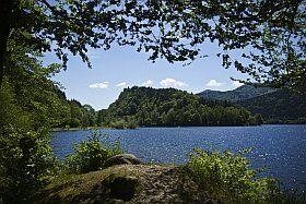Paysages naturels des Vosges