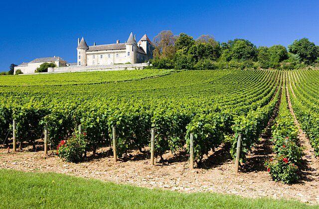 La Route des Vins en Gironde