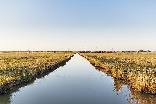 paysage du marais poitevin desséché