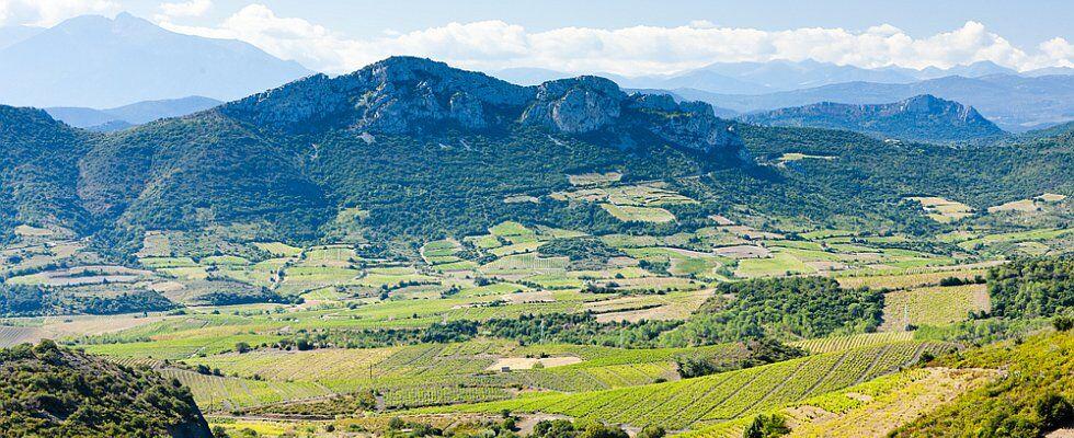 vacances en Languedoc Roussillon au pied des Pyrénées