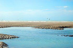 Marée basse en baie de la Somme