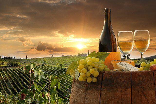les routes des vins et des fromages dans les campagnes françaises