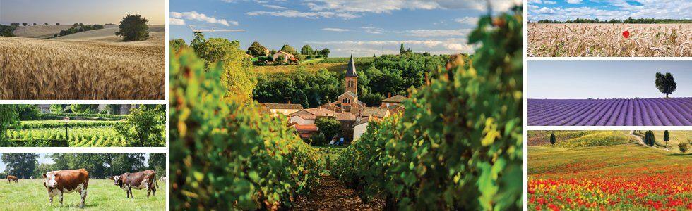 Des vacances à la campagne en France