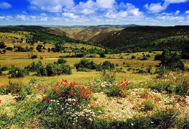vacances au vert en Languedoc Roussillon