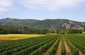 Tourisme vert en Ardèche