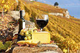 vin, fromage, produits du terroir Midi-Pyrénées