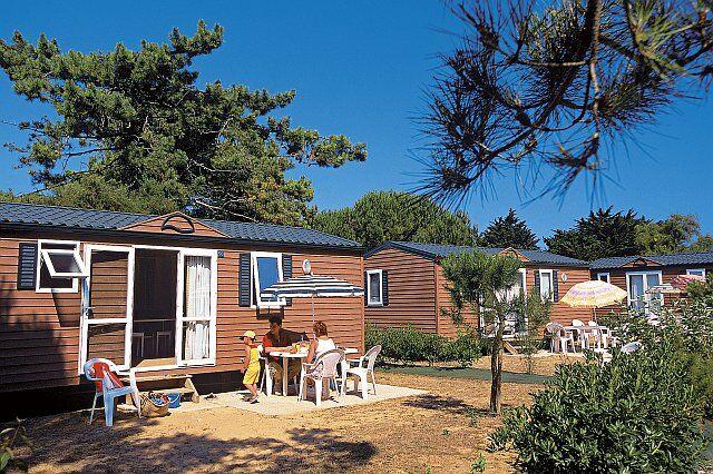 camping entre amis le bon plan vacances