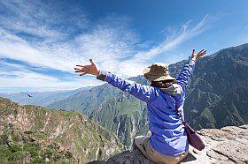 prenez de la hauteur pendant les vacances, observez vautours et chauve souris