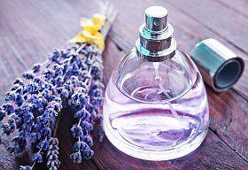 Fabriquer soi-même un parfum de lavande en Provence