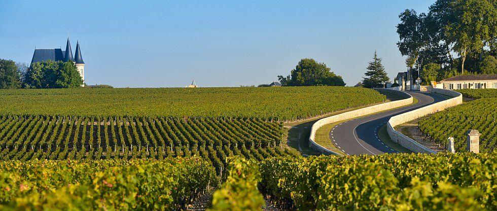 Vignobles sur la route des vins