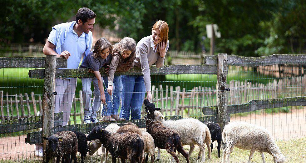 De beaux moments à partager en famille comme ici, dans le parc du Puy du Fou