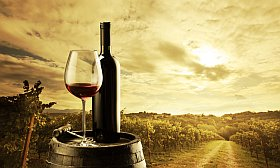 Route des vins et chasse aux trésors