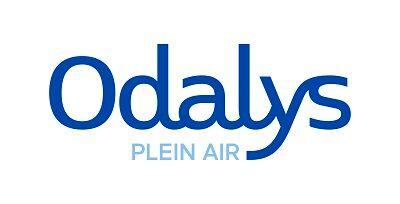logo plein air